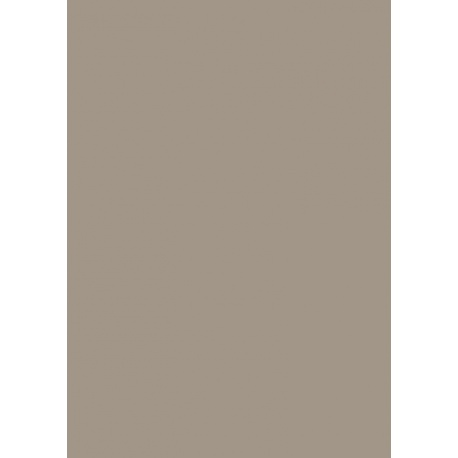 Papier multi-usages A4 120g tau 35f