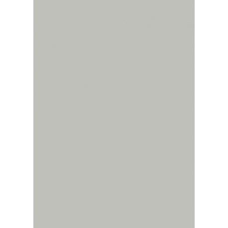 Papier multi-usages A4 160g gr 25f