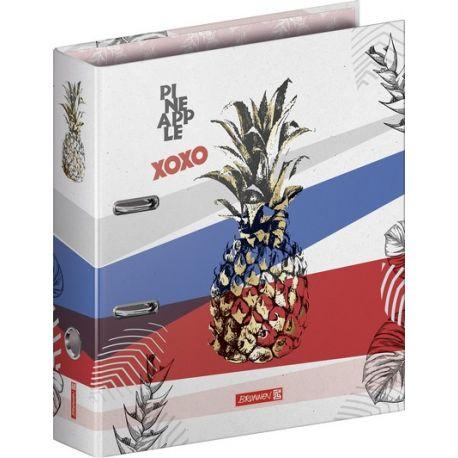 Classeur à levier 8vm RVS Pineapple