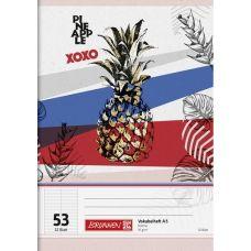 Cahier de voc. A5 RVS Pineapple 64p
