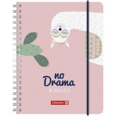 Agenda scolaire 1s/2p A6 PP Lama