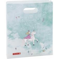 Boîte à cahiers A4 Princesse ouvert