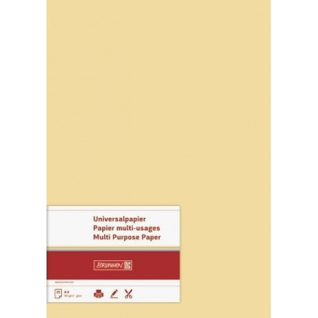 Papier multi-usages A4 160g mie 25f