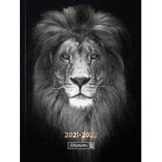 Agenda scolaire 1j/p A6 souple Lion