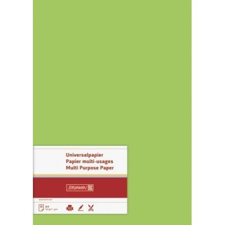 Papier multi-usages A4 160g verc25f