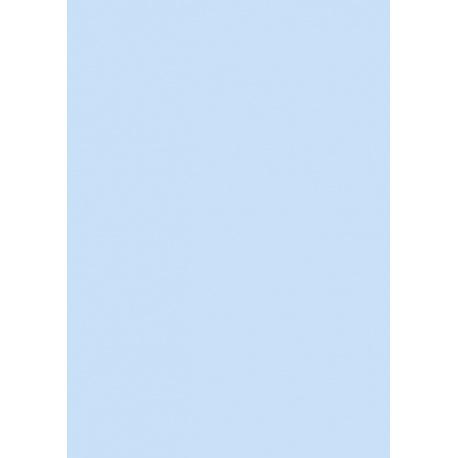 Papier multi-usages A4 80g blcl 50f