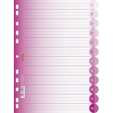 Intercalaires A4 ColourCode12p pink