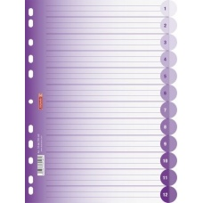 Intercalaires A4 ColourCode12p purp