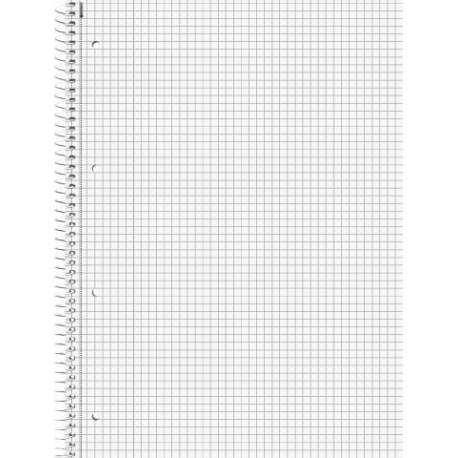 Cahier-recharge A4 70g 5x5 160p