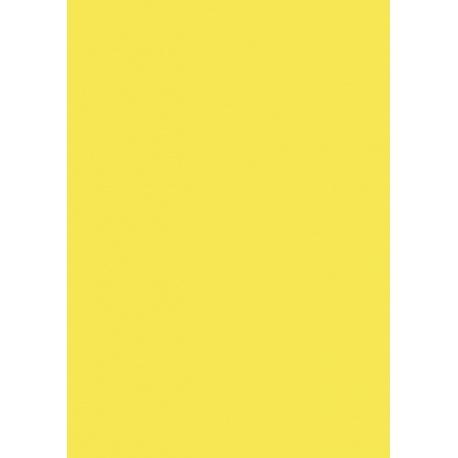 Carton affiche 48x68 380g jaune sol