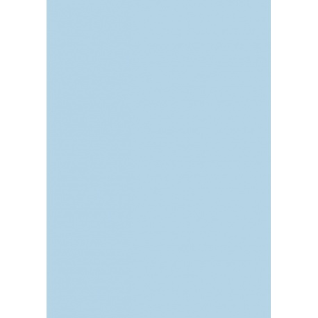 Carton affiche 48x68 380g bleu clai