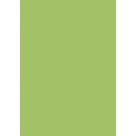 Carton affiche 48x68 380g vert prin