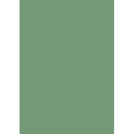 Carton affiche 48x68 380g vert feui