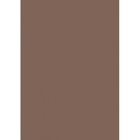 Carton affiche 48x68 380g marron mo