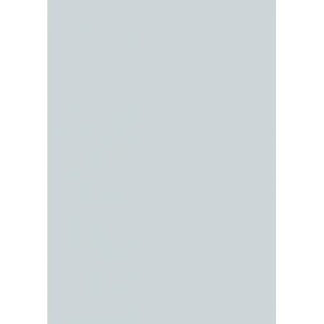 Carton affiche 48x68 380g gris cl