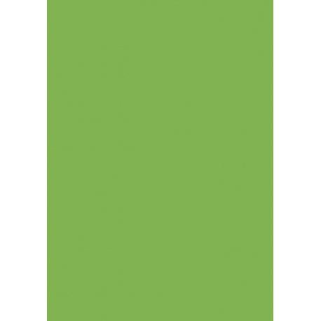 Carton affiche 48x68 340g vert fluo