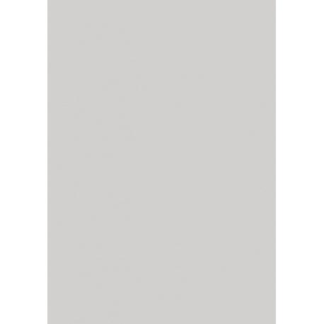 Papier crépon 50x250 32g gris