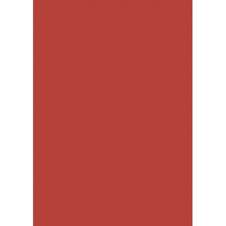 Papier de soie 50x70cm 5pc rge cl