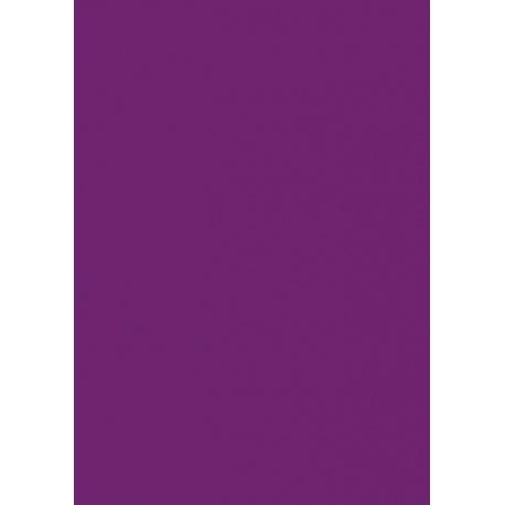 Papier de soie 50x70cm 5pc violet