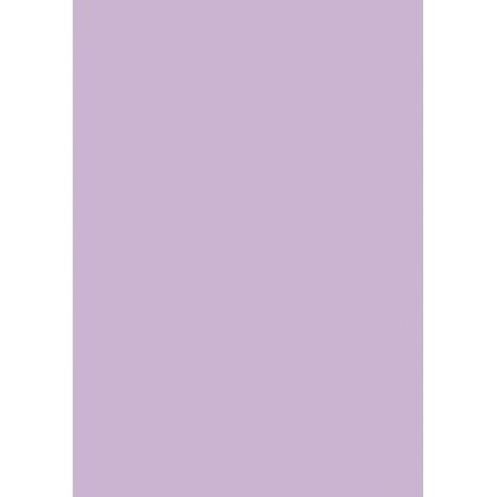 Carton couleur 50x70 300g mauve pâl