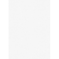 Carton multi-us50x70 220g blanc