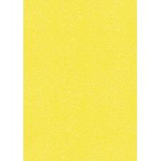 Carton multi-us50x70 220g jaune or