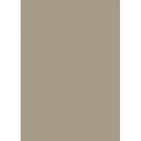 Papier Couleur 50x70 Cm 130g Taupe Code EAN