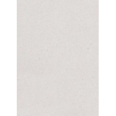 Carton 50x70cm gris 630g 1,0mm