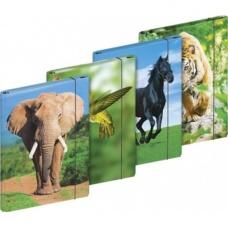 Boîte à cahiers A4 Animaux 4motifs